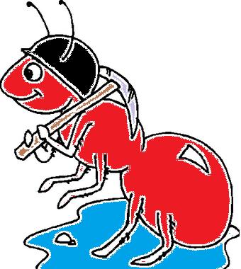 formiga roja